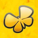 Kino Butterfly - Cosmopolite
